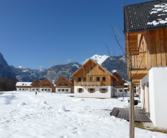 Austrian Alps Properties for Sale